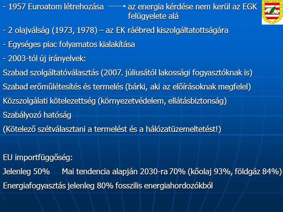 - 1957 Euroatom létrehozása az energia kérdése nem kerül az EGK felügyelete alá - 2 olajválság (1973, 1978) – az EK ráébred kiszolgáltatottságára - Egységes piac folyamatos kialakítása - 2003-tól új irányelvek: Szabad szolgáltatóválasztás (2007.