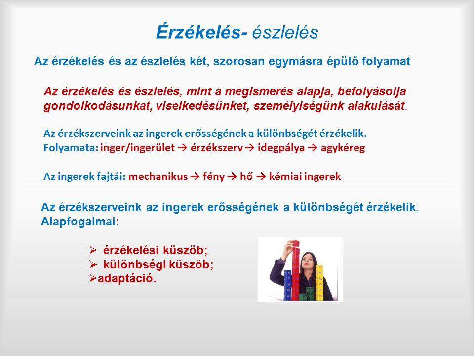 Célokhoz illeszthető oktatási folyamat (didaktikai) feladatainak jellemzői (II/3.