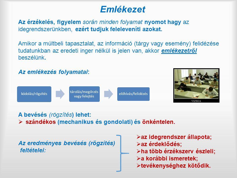 A munkavégzés önállóságának jelentősége (III/5.