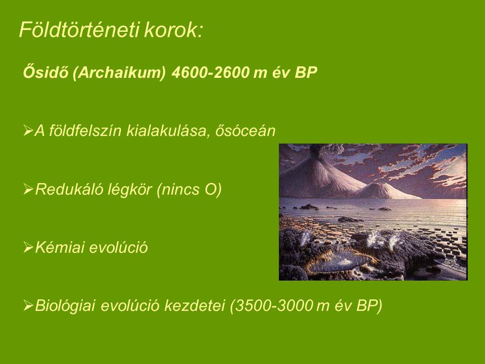 Ősidő (Archaikum) 4600-2600 m év BP  A földfelszín kialakulása, ősóceán  Redukáló légkör (nincs O)  Kémiai evolúció  Biológiai evolúció kezdetei (