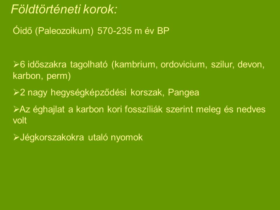 Földtörténeti korok: Óidő (Paleozoikum) 570-235 m év BP  6 időszakra tagolható (kambrium, ordovicium, szilur, devon, karbon, perm)  2 nagy hegységké