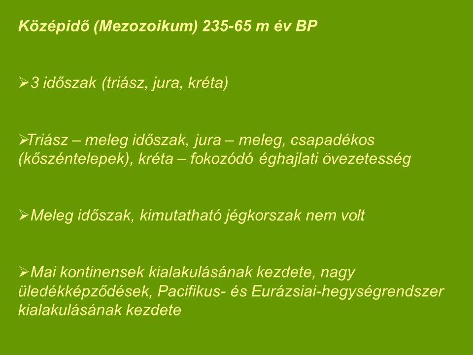 Középidő (Mezozoikum) 235-65 m év BP  3 időszak (triász, jura, kréta)  Triász – meleg időszak, jura – meleg, csapadékos (kőszéntelepek), kréta – fok