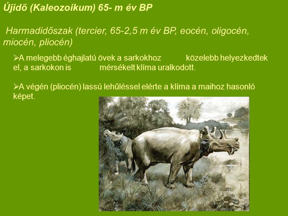 Újidő (Kaleozoikum) 65- m év BP Harmadidőszak (tercier, 65-2,5 m év BP, eocén, oligocén, miocén, pliocén)  A melegebb éghajlatú övek a sarkokhoz köze