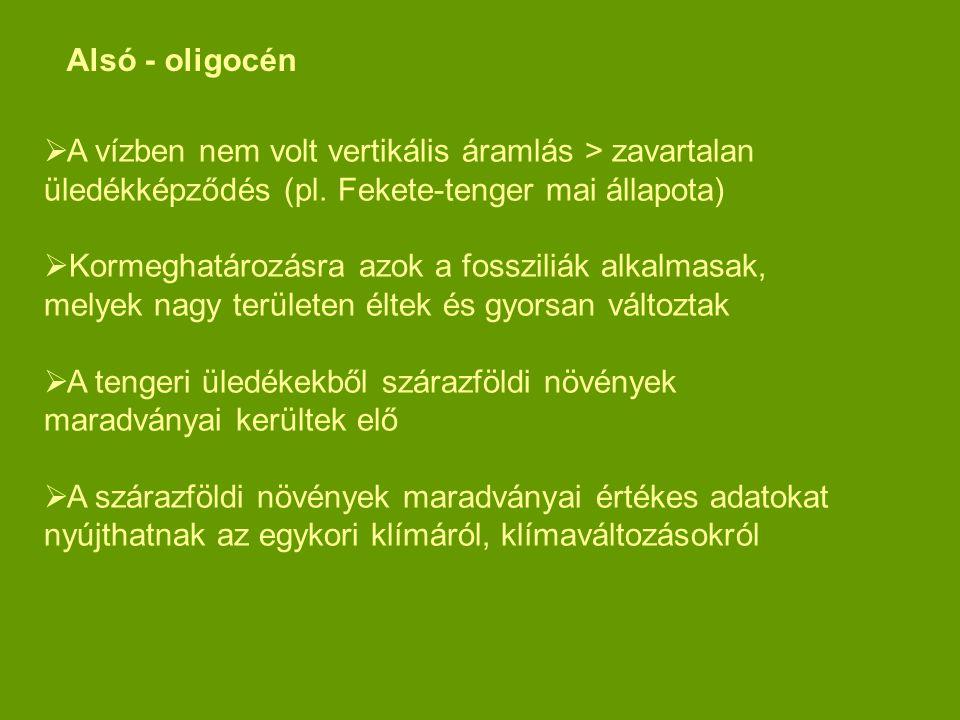  A vízben nem volt vertikális áramlás > zavartalan üledékképződés (pl. Fekete-tenger mai állapota)  Kormeghatározásra azok a fossziliák alkalmasak,