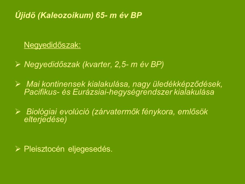 Újidő (Kaleozoikum) 65- m év BP Negyedidőszak:  Negyedidőszak (kvarter, 2,5- m év BP)  Mai kontinensek kialakulása, nagy üledékképződések, Pacifikus