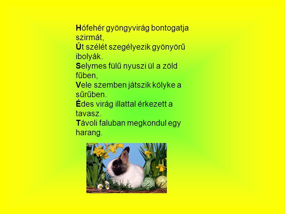 Hófehér gyöngyvirág bontogatja szirmát, Út szélét szegélyezik gyönyörű ibolyák. Selymes fülű nyuszi ül a zöld fűben, Vele szemben játszik kölyke a sűr