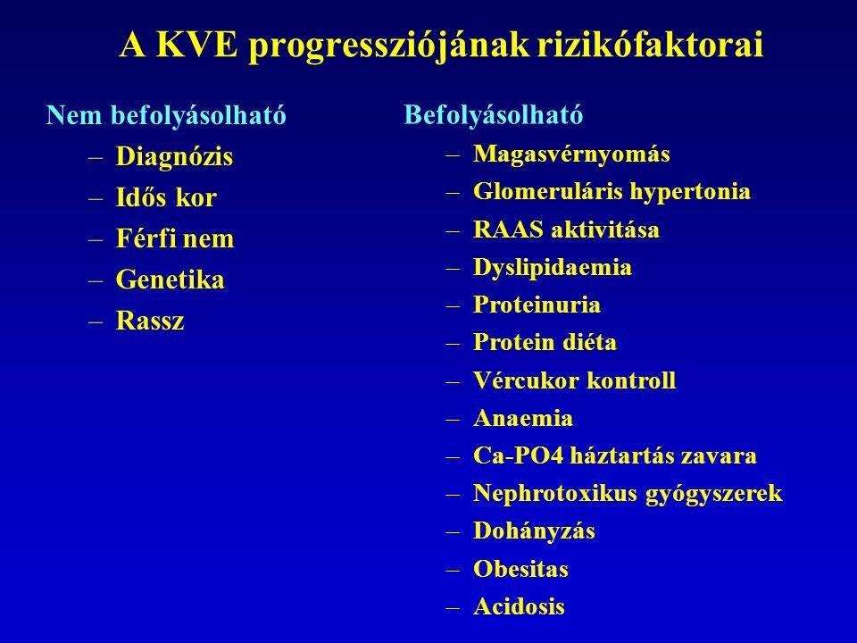 A KVE progressziójának rizikófaktorai Nem befolyásolható –Diagnózis –Idős kor –Férfi nem –Genetika –Rassz Befolyásolható –Magasvérnyomás –Glomeruláris