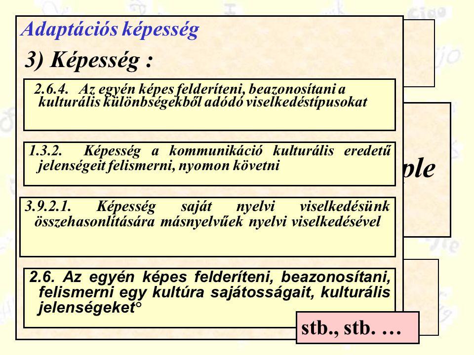 Compétences / ressources Quelle organisation pour le CARAP .