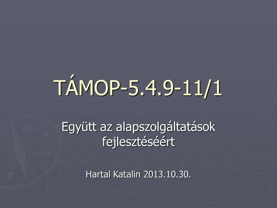 TÁMOP-5.4.9-11/1 Együtt az alapszolgáltatások fejlesztéséért Hartal Katalin 2013.10.30.