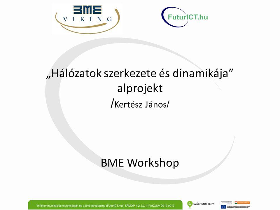 """""""Hálózatok szerkezete és dinamikája"""" alprojekt / Kertész János / BME Workshop"""