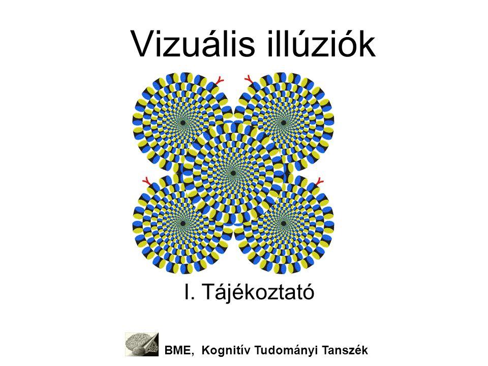 A kurzus tematikája BME Kognitív Tudományi Tanszék 1szeptember8Tájékoztató (Simor Péter) 2szeptember15A látás alapjai és látási utóhatások (Kovács Petra) 3szeptember22Kontraszt illúziók (K.