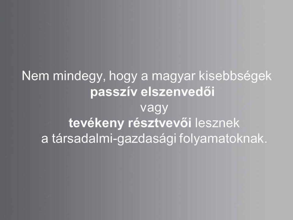 Nem mindegy, hogy a magyar kisebbségek passzív elszenvedői vagy tevékeny résztvevői lesznek a társadalmi-gazdasági folyamatoknak.