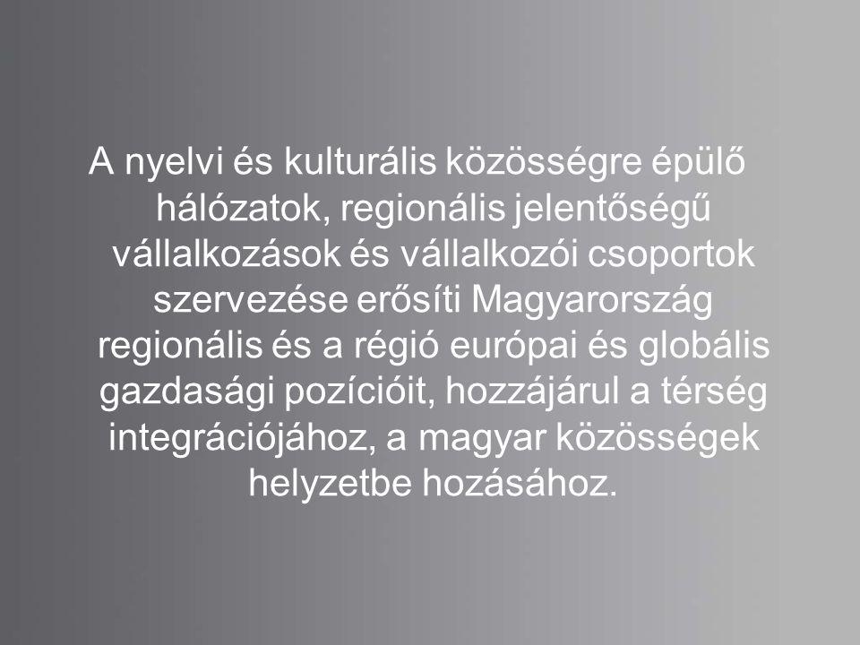 A nyelvi és kulturális közösségre épülő hálózatok, regionális jelentőségű vállalkozások és vállalkozói csoportok szervezése erősíti Magyarország regionális és a régió európai és globális gazdasági pozícióit, hozzájárul a térség integrációjához, a magyar közösségek helyzetbe hozásához.