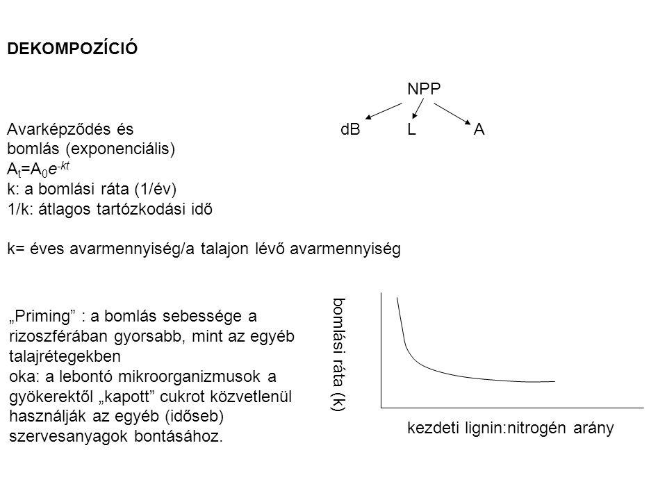 DEKOMPOZÍCIÓ NPP Avarképződés és dBLA bomlás (exponenciális) A t =A 0 e -kt k: a bomlási ráta (1/év) 1/k: átlagos tartózkodási idő k= éves avarmennyis