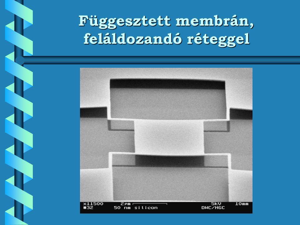 Digital Micromirror Device (DMD) Pl.