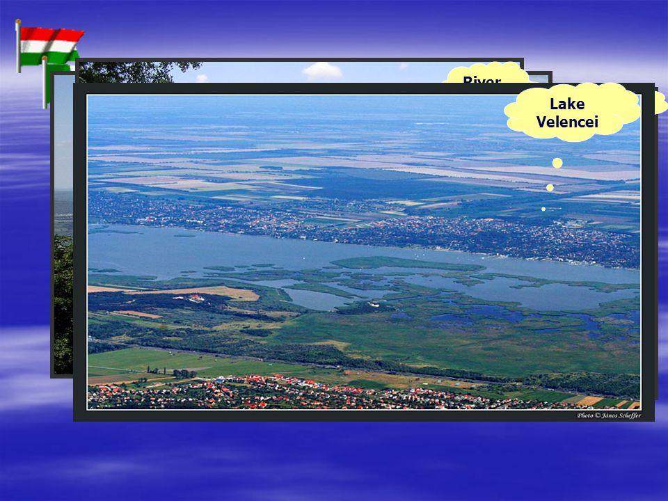 River Danube River Tisza Lake Balaton Lake Velencei