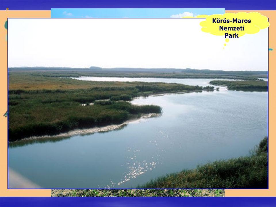 Fertő-Hanság Nemzeti Park Balaton-felvidéki Nemzeti Park Kiskunsági Nemzeti Park Körös-Maros Nemzeti Park