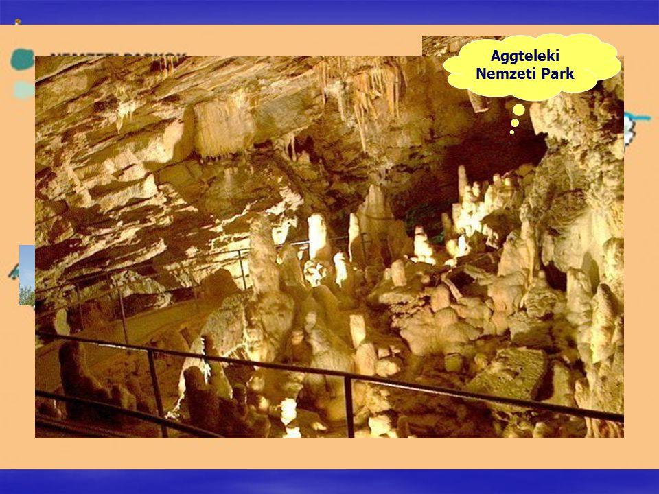 Hortobágyi Nemzeti Park Bükki Nemzeti Park Aggteleki Nemzeti Park