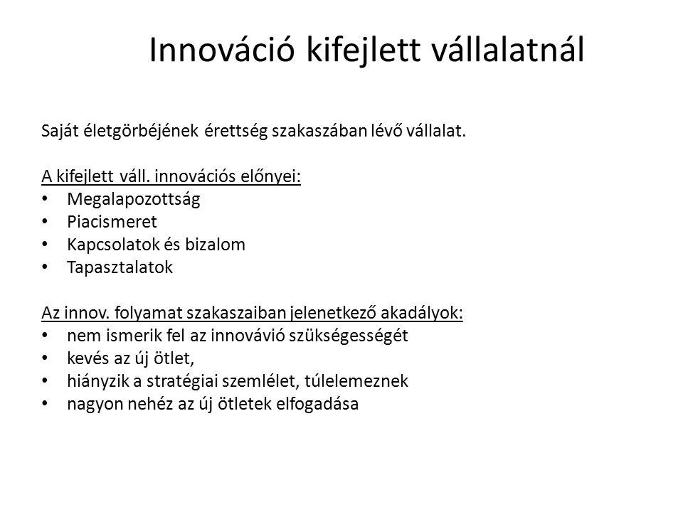 Innováció kifejlett vállalatnál Saját életgörbéjének érettség szakaszában lévő vállalat. A kifejlett váll. innovációs előnyei: Megalapozottság Piacism
