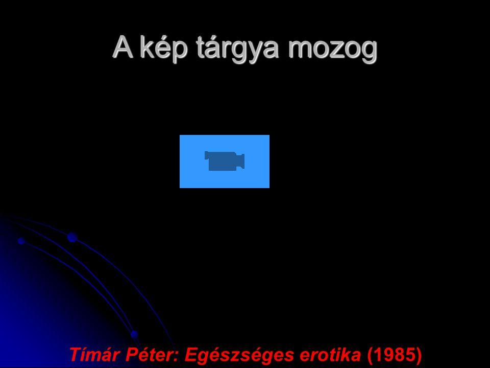 A kép tárgya mozog Tímár Péter: Egészséges erotika (1985)