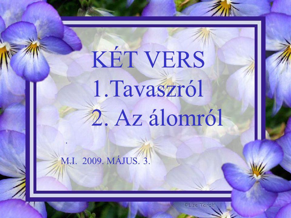 KÉT VERS 1.Tavaszról 2. Az álomról. M.I. 2009. MÁJUS. 3.