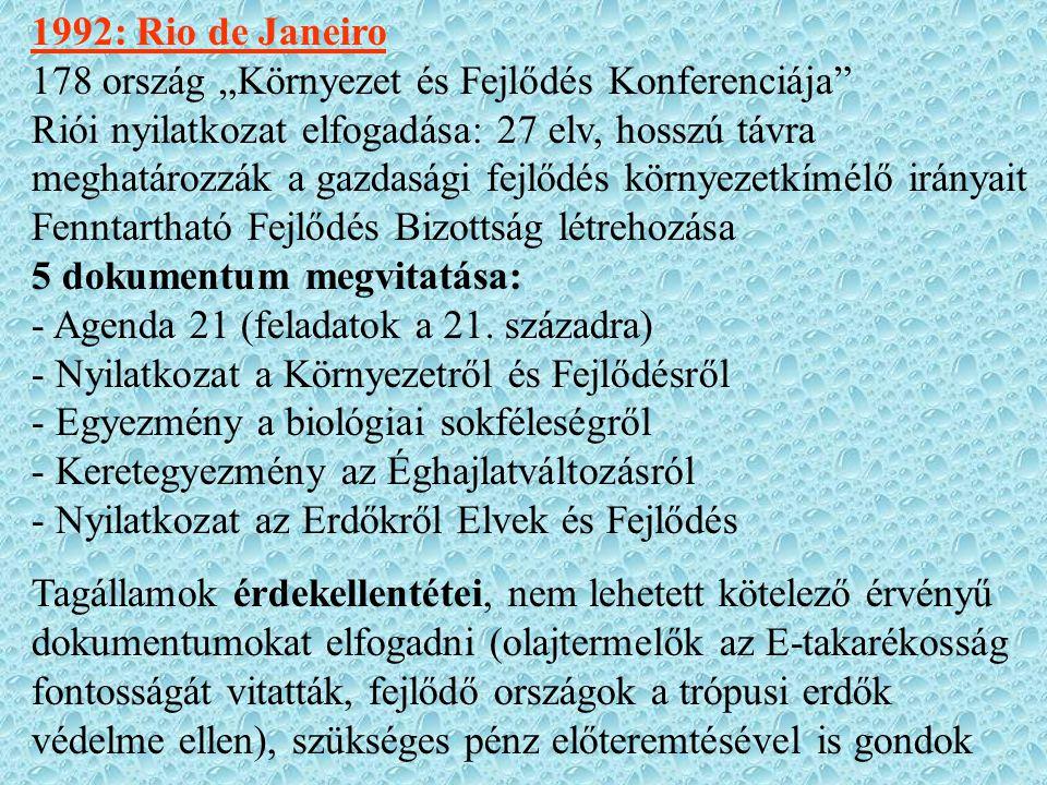 """1992: Rio de Janeiro 178 ország """"Környezet és Fejlődés Konferenciája"""" Riói nyilatkozat elfogadása: 27 elv, hosszú távra meghatározzák a gazdasági fejl"""