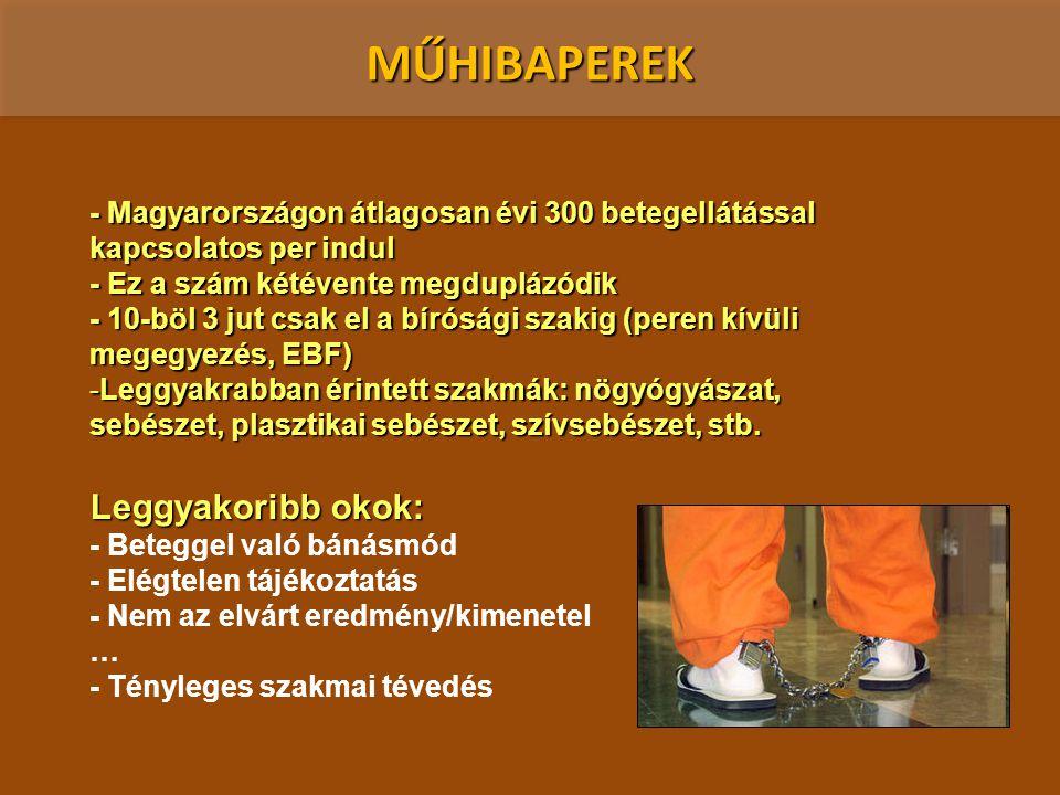 MŰHIBAPEREK - Magyarországon átlagosan évi 300 betegellátással kapcsolatos per indul - Ez a szám kétévente megduplázódik - 10-böl 3 jut csak el a bíró