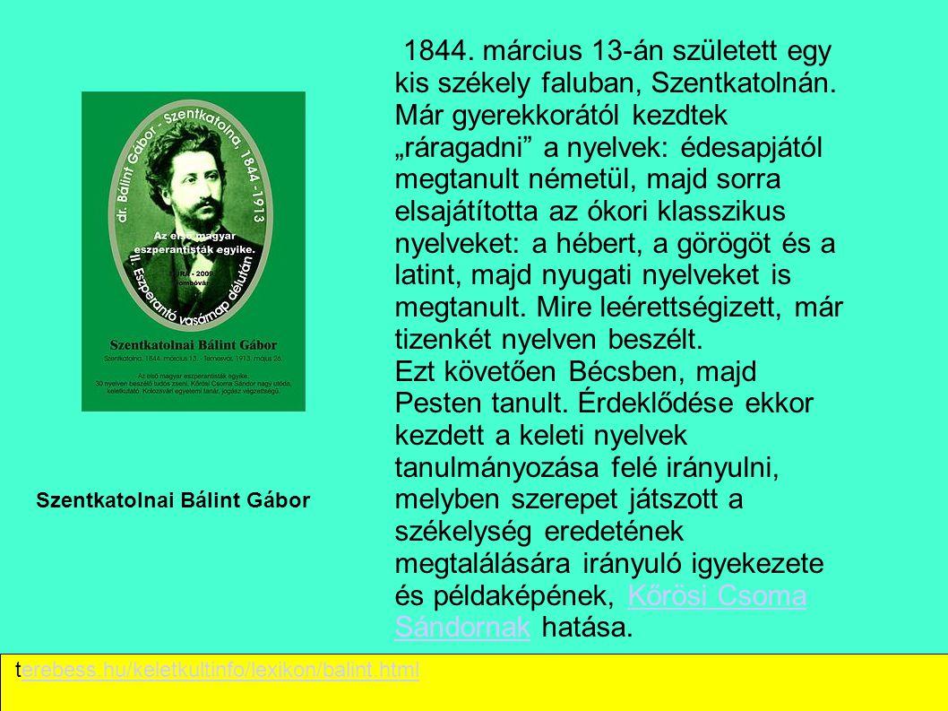 """Szentkatolnai Bálint Gábor 1844. március 13-án született egy kis székely faluban, Szentkatolnán. Már gyerekkorától kezdtek """"ráragadni"""" a nyelvek: édes"""