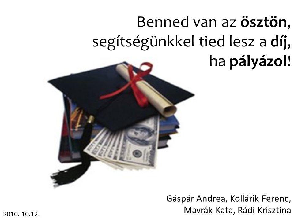 Gáspár Andrea, Kollárik Ferenc, Mavrák Kata, Rádi Krisztina Benned van az ösztön, segítségünkkel tied lesz a díj, ha pályázol! 2010. 10.12.