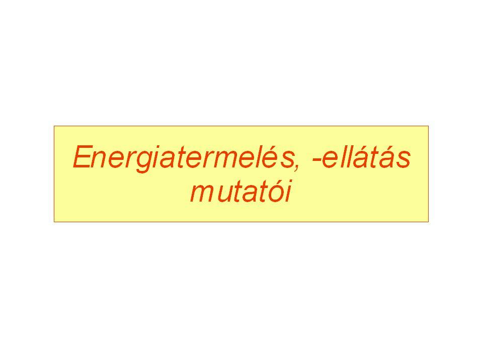 Kizárólagos villamosenergia-termelés Erőműtípusok: