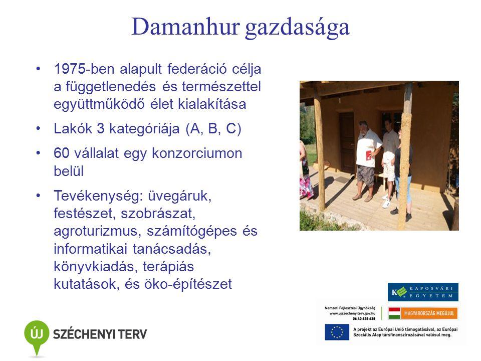 Damanhur gazdasága 1975-ben alapult federáció célja a függetlenedés és természettel együttműködő élet kialakítása Lakók 3 kategóriája (A, B, C) 60 vállalat egy konzorciumon belül Tevékenység: üvegáruk, festészet, szobrászat, agroturizmus, számítógépes és informatikai tanácsadás, könyvkiadás, terápiás kutatások, és öko-építészet
