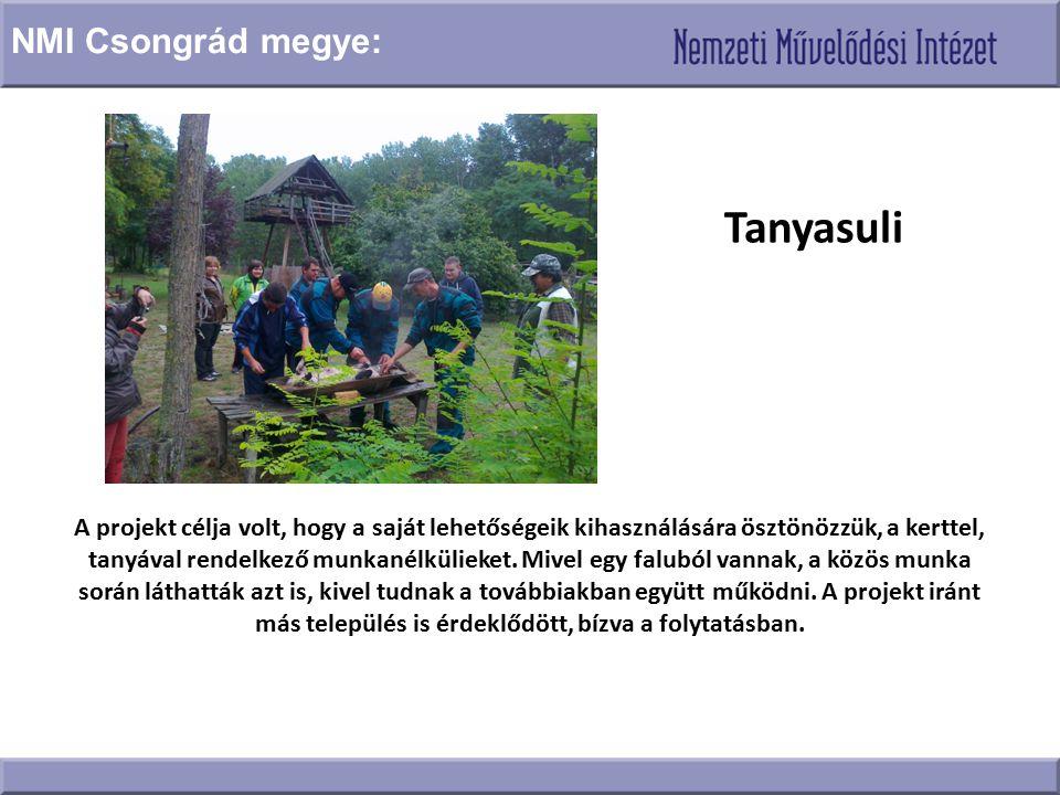 Tanyasuli A projekt célja volt, hogy a saját lehetőségeik kihasználására ösztönözzük, a kerttel, tanyával rendelkező munkanélkülieket. Mivel egy falub