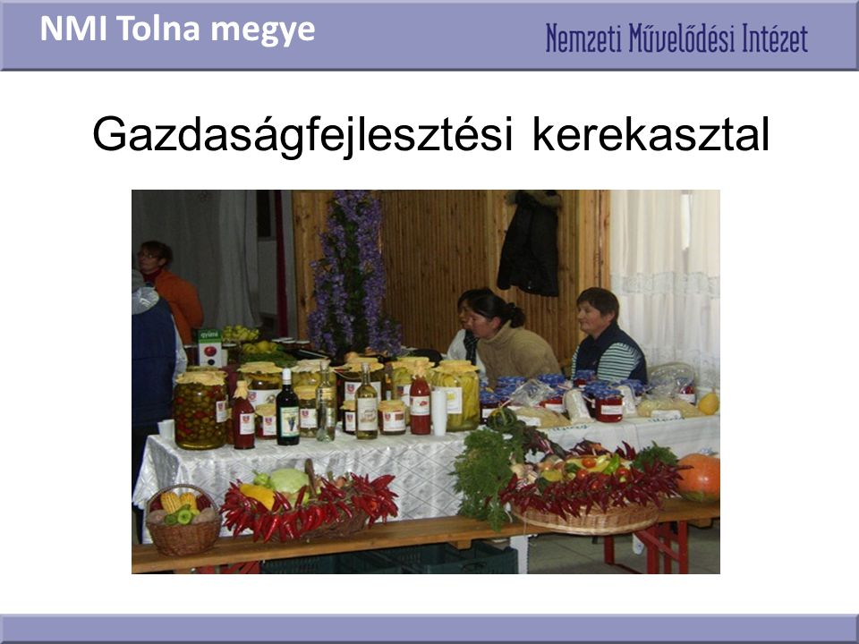 Gazdaságfejlesztési kerekasztal NMI Tolna megye