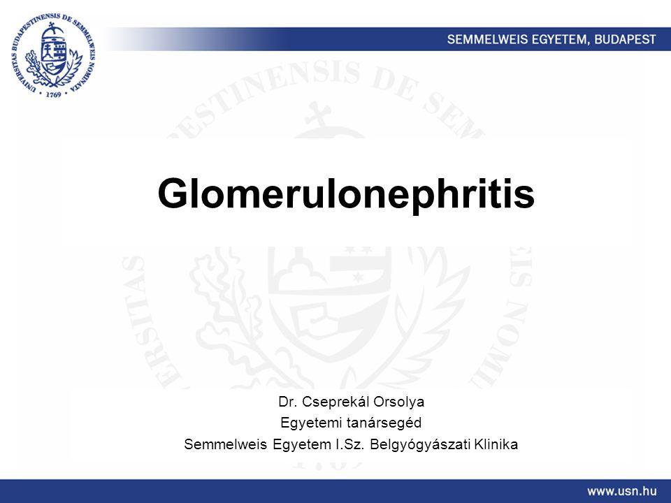 Glomerulonephritis Dr. Cseprekál Orsolya Egyetemi tanársegéd Semmelweis Egyetem I.Sz. Belgyógyászati Klinika