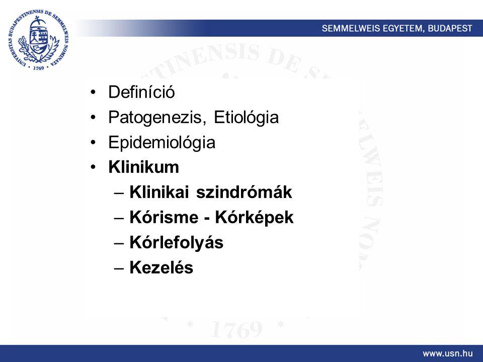 Definíció Patogenezis, Etiológia Epidemiológia Klinikum –Klinikai szindrómák –Kórisme - Kórképek –Kórlefolyás –Kezelés