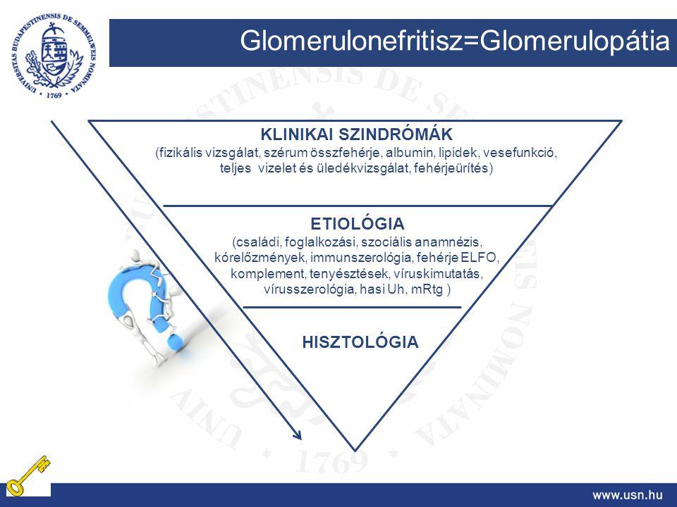 Glomerulonefritisz=Glomerulopátia KLINIKAI SZINDRÓMÁK (fizikális vizsgálat, szérum összfehérje, albumin, lipidek, vesefunkció, teljes vizelet és üledé
