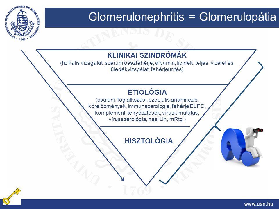 Glomerulonephritis = Glomerulopátia KLINIKAI SZINDRÓMÁK (fizikális vizsgálat, szérum összfehérje, albumin, lipidek, teljes vizelet és üledékvizsgálat,