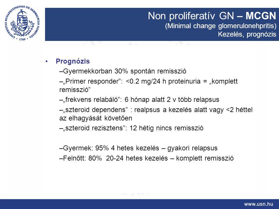 """Non proliferatív GN – MCGN (Minimal change glomerulonehpritis) Kezelés, prognózis Prognózis –Gyermekkorban 30% spontán remisszió –""""Primer responder"""":"""