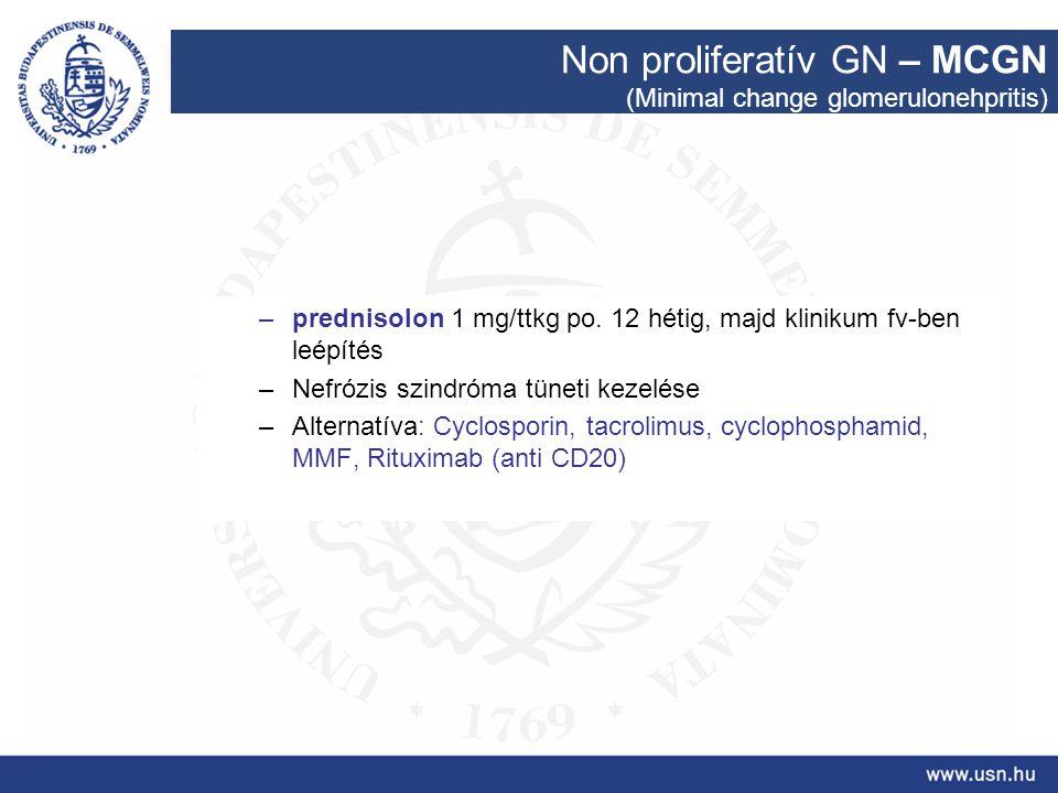 Non proliferatív GN – MCGN (Minimal change glomerulonehpritis) –prednisolon 1 mg/ttkg po. 12 hétig, majd klinikum fv-ben leépítés –Nefrózis szindróma
