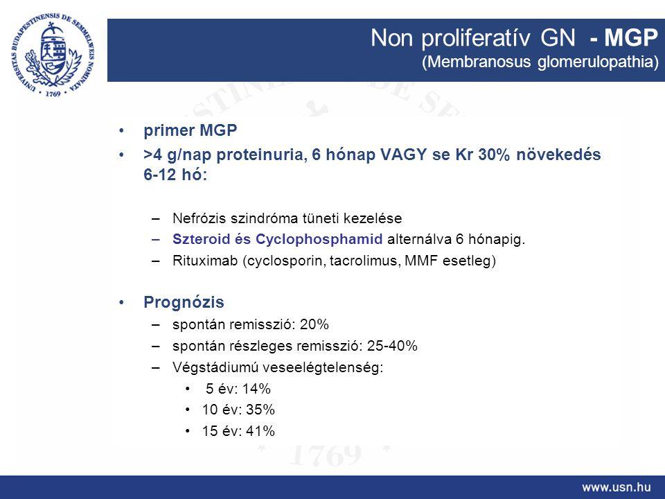 Non proliferatív GN - MGP (Membranosus glomerulopathia) primer MGP >4 g/nap proteinuria, 6 hónap VAGY se Kr 30% növekedés 6-12 hó: –Nefrózis szindróma