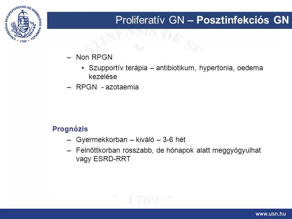 Proliferatív GN – Posztinfekciós GN –Non RPGN Szupportív terápia – antibiotikum, hypertonia, oedema kezelése –RPGN - azotaemia Prognózis –Gyermekkorba