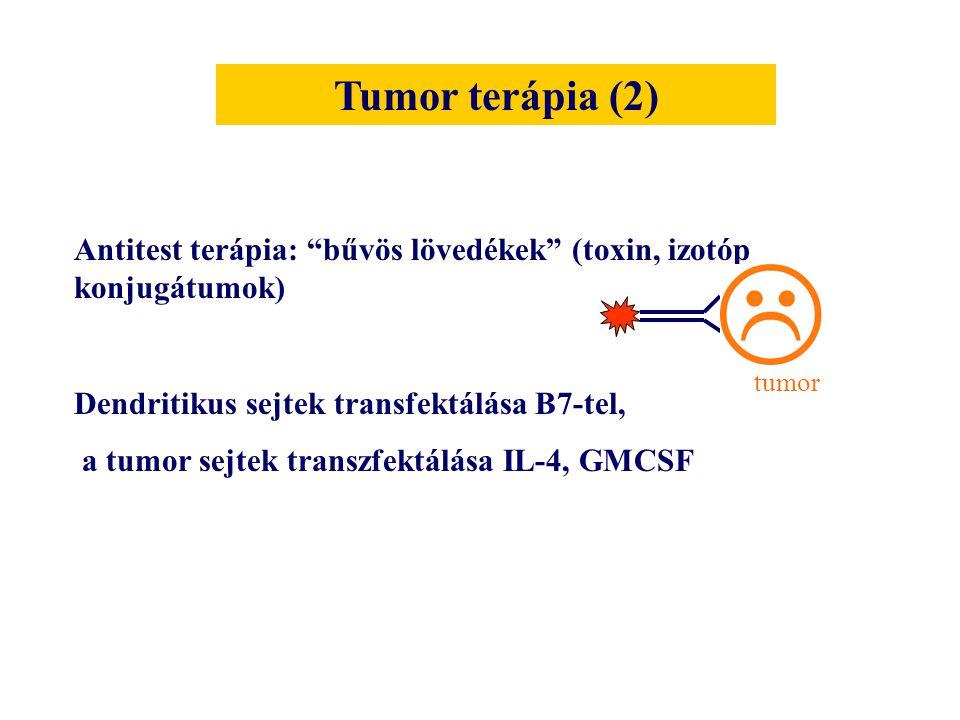 """Antitest terápia: """"bűvös lövedékek"""" (toxin, izotóp konjugátumok) Dendritikus sejtek transfektálása B7-tel, a tumor sejtek transzfektálása IL-4, GMCSF"""