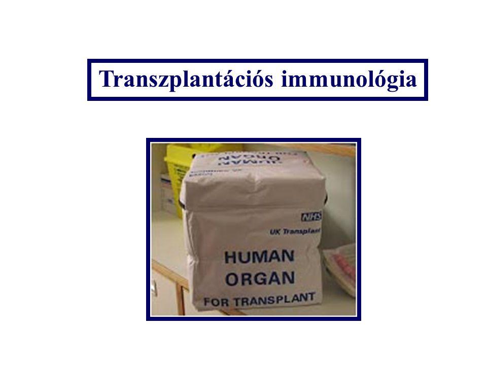 Transzplantációs immunológia