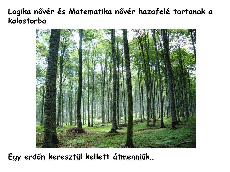 Logika nővér és Matematika nővér hazafelé tartanak a kolostorba Egy erdőn keresztül kellett átmenniük…