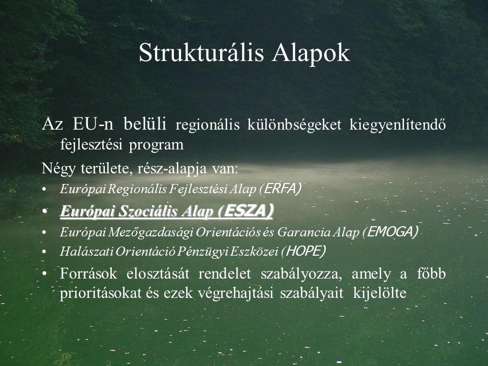 Strukturális Alapok Az EU-n belüli regionális különbségeket kiegyenlítendő fejlesztési program Négy területe, rész-alapja van: Európai Regionális Fejlesztési Alap ( ERFA) Európai Szociális Alap ( ESZA)Európai Szociális Alap ( ESZA) Európai Mezőgazdasági Orientációs és Garancia Alap ( EMOGA) Halászati Orientáció Pénzügyi Eszközei ( HOPE) Források elosztását rendelet szabályozza, amely a főbb prioritásokat és ezek végrehajtási szabályait kijelölte