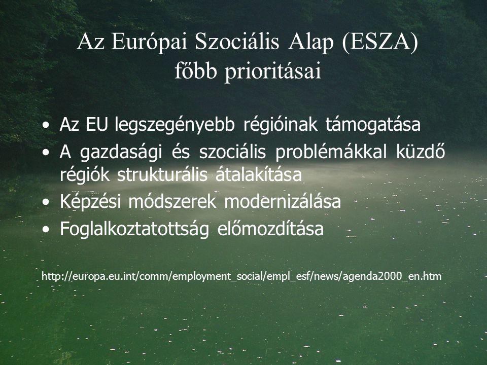 Az Európai Szociális Alap (ESZA) főbb prioritásai Az EU legszegényebb régióinak támogatása A gazdasági és szociális problémákkal küzdő régiók strukturális átalakítása Képzési módszerek modernizálása Foglalkoztatottság előmozdítása http://europa.eu.int/comm/employment_social/empl_esf/news/agenda2000_en.htm