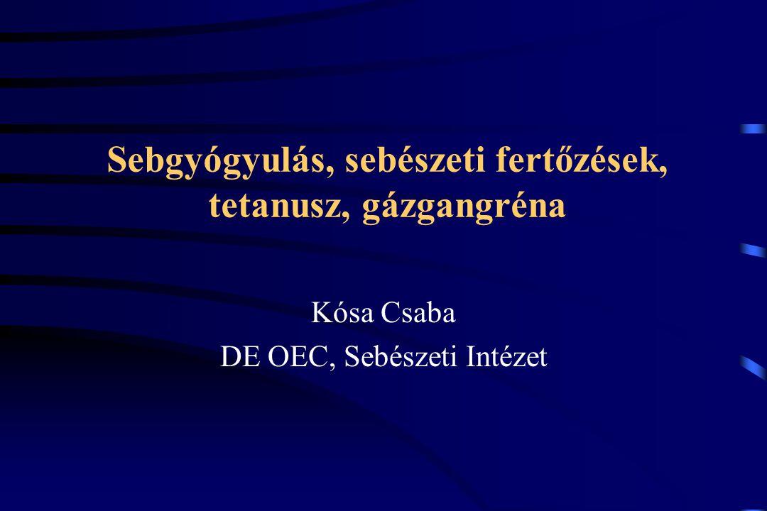 Sebgyógyulás, sebészeti fertőzések, tetanusz, gázgangréna Kósa Csaba DE OEC, Sebészeti Intézet