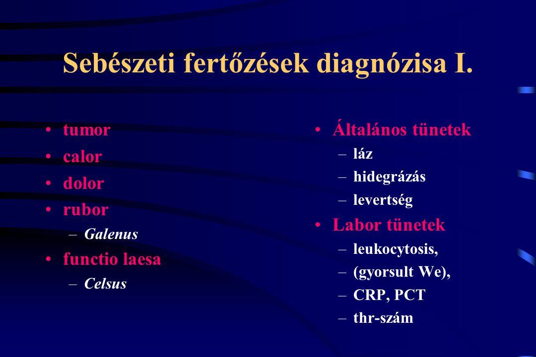 Sebészeti fertőzések diagnózisa I. tumor calor dolor rubor –Galenus functio laesa –Celsus Általános tünetek –láz –hidegrázás –levertség Labor tünetek