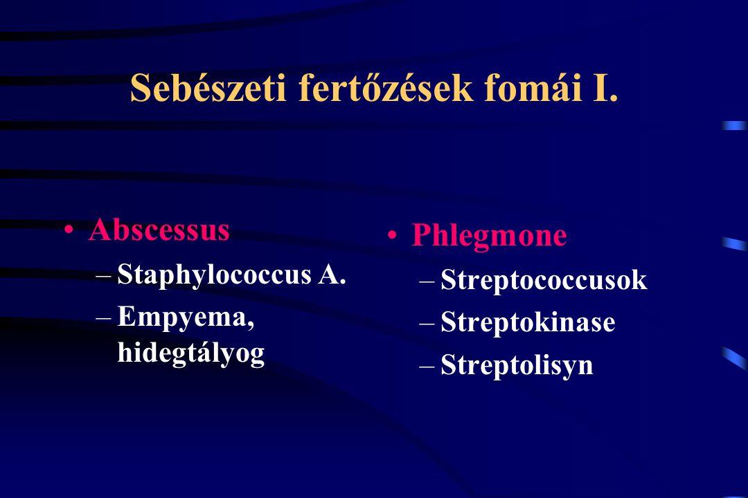 Sebészeti fertőzések fomái I. Abscessus –Staphylococcus A. –Empyema, hidegtályog Phlegmone –Streptococcusok –Streptokinase –Streptolisyn
