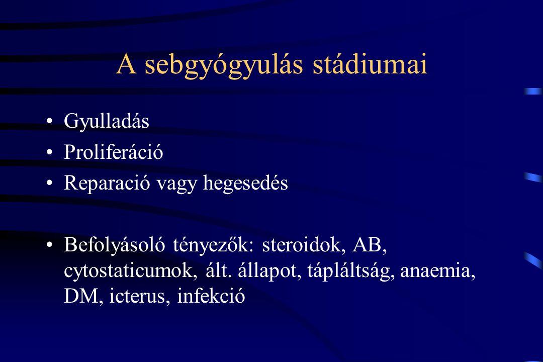 A sebgyógyulás stádiumai Gyulladás Proliferáció Reparació vagy hegesedés Befolyásoló tényezők: steroidok, AB, cytostaticumok, ált. állapot, tápláltság